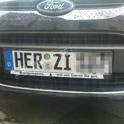 HER-ZI