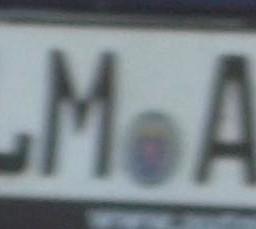 LM-AA