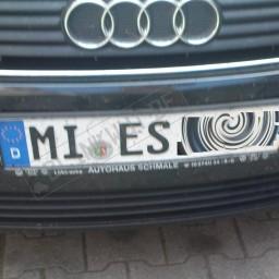 MI-ES