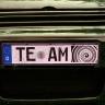 TE-AM